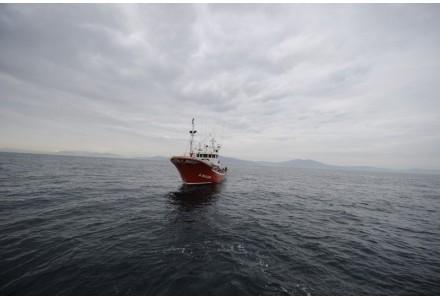 Comprar Online Conservas Mar Cantábrico, peixe enlatado País Basco