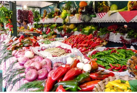 Online Kaufen Canned Land Gemüsekonserven aus dem Baskenland, Navarra